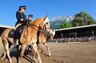 Order tickets for the Haflinger Show