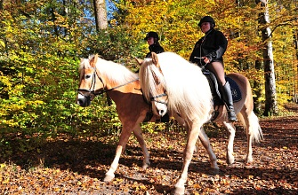 Register riding lessons
