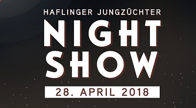 Night Show from the Haflinger young breeders